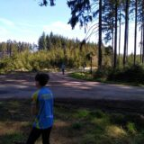 Plný Hutecký les